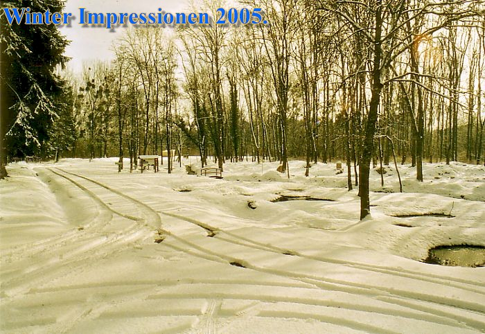 Winter020.jpg (156627 Byte)
